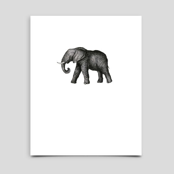 Kate's Elephant Dictionary Illustration Print